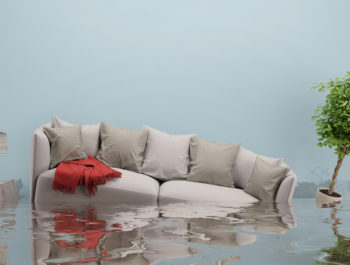 Lagny-sur-marne a été reconnue en état de catastrophe naturelle - Procédure à suivre